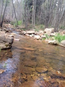 Tonto National Forest creek