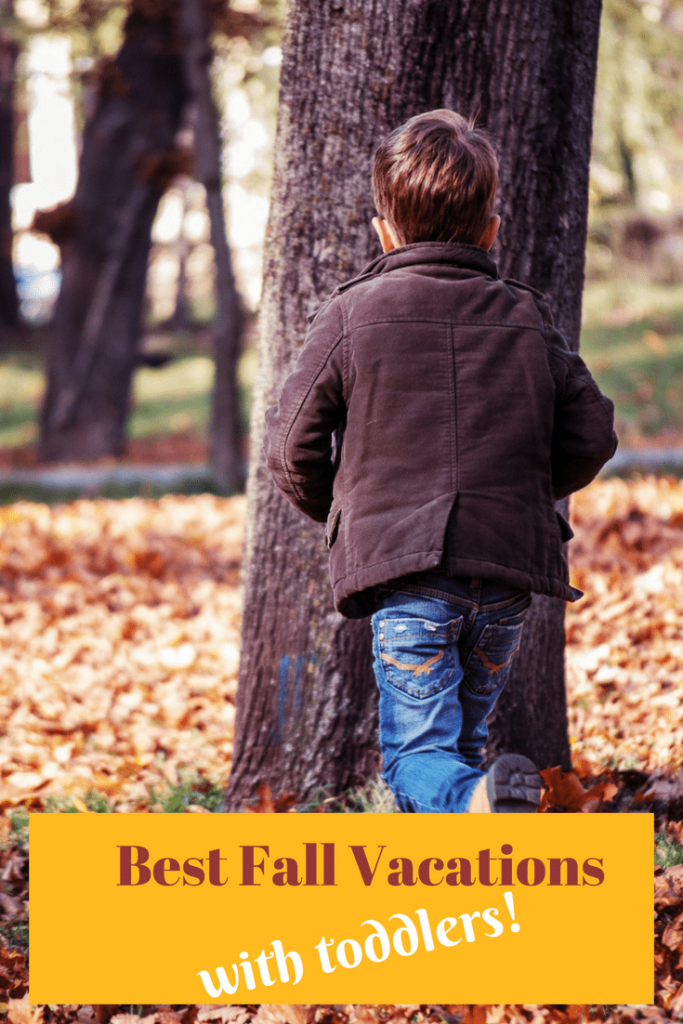 Best Fall Vacations with toddlers