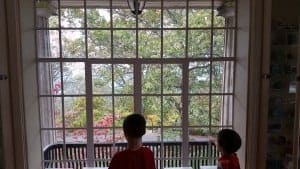 Kid Friendly Things to do in Huntsville Alabama