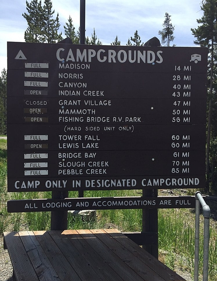 Campgrounds in Yellowstone NP