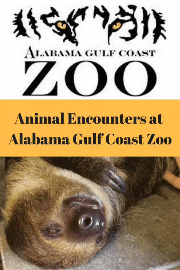 Animal Encounters at the Alabama Gulf Coast Zoo