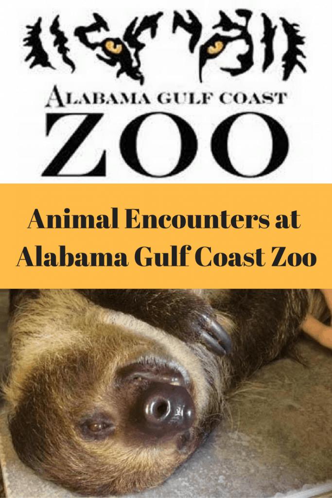 Animal Encounters at the Alabama Gulf Coast Zoo